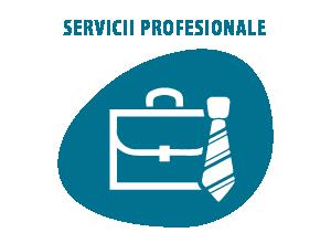 Spalatorie covoare servicii profesionale